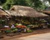Uganda fruit market