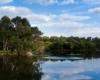 Western Australia Yanchep National Park